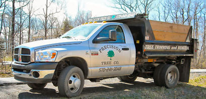 Tree services and landscaping including Wayne and Pike counties